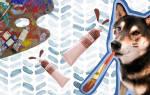 Картины пса Хантера продают в интернете