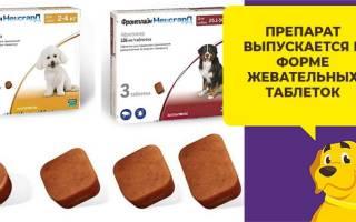 Жевательные таблетки Фронтлайн Нексгард для собак от блох и клещей: отзывы, инструкция по применению