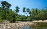 Слон в Таиланде разбросал сплавлявшихся по реке туристов
