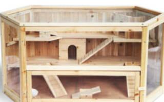 Домик для хомяка своими руками: как сделать из картона, фанеры, дерева, схема и инструкция