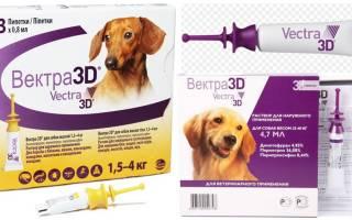 Капли Вектор 3D от клещей для собак: инструкция по применению, отзывы, противопоказания