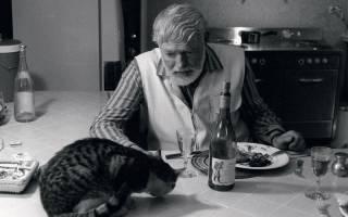 Гении, которые любили кошек