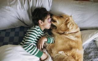 Удивительная дружба животных и детей — фото