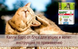 Средства от блох Барс (капли, спрей): инструкция по применения, как лечить котят, собак или кошек