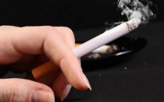 Чем сигаретный дым вреден для домашних животных