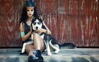 Какой собакой был каждый знак Зодиака в прошлой жизни