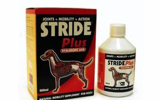 Страйд плюс для собак: состав, побочные эффекты, инструкция по применению, аналоги