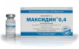 Ветеринарный препарат Максидин для собак и кошек: инструкция по применению