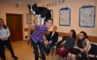 В Тольятти живёт лучшая собака-терапевт