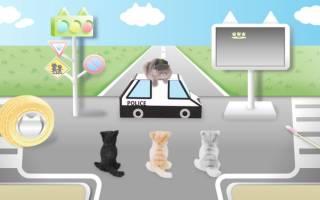 Японцы сняли видео о безопасности дорожного движения для кошек