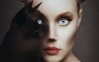 Соответствие животных и знаков зодиака