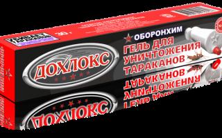 Гель Дохлокс от тараканов: отзывы, инструкция по применению, принцип действия, эффективность