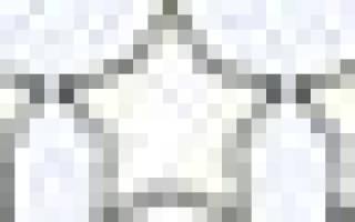Керри блю терьер: описание и стандарт породы, уход и содержание, плюсы и минусы, особенности стрижки