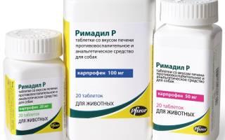Препарат «Римадил»: особенности лекарственного средства для собак и кошек, инструкция по применению