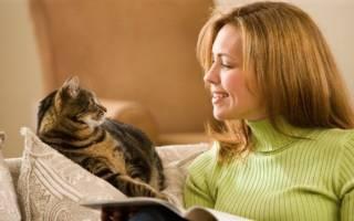 Что кошки не понимают в людях