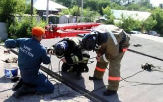 В Омске пожарник спас застрявшего щенка