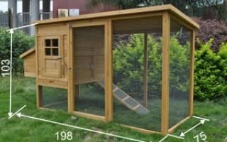 Курятники для кур-несушек: строительство и устройство своими руками птичника и загона для кур, фото