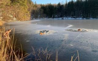 Заново родился: жители Калининграда спасли пса Арчика из замёрзшего озера