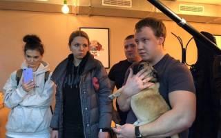 Московское анти-кафе закрыли после найденных нарушений с содержанием в нём животных