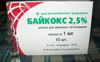 Инструкция по применению препарата Байкокса для лечения птиц