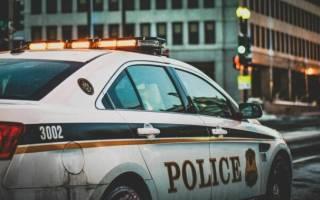 Полиция из США поймала на краже индейку, проникшую в квартиру