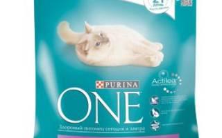 Корм для кошек Purina One: описание, состав, отзывы ветеринаров и потребителей о пурине