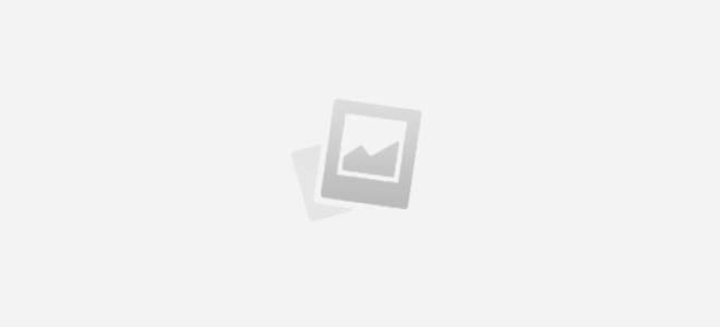 Аксолотль – уникальный домашний питомец: уход за животным, цена